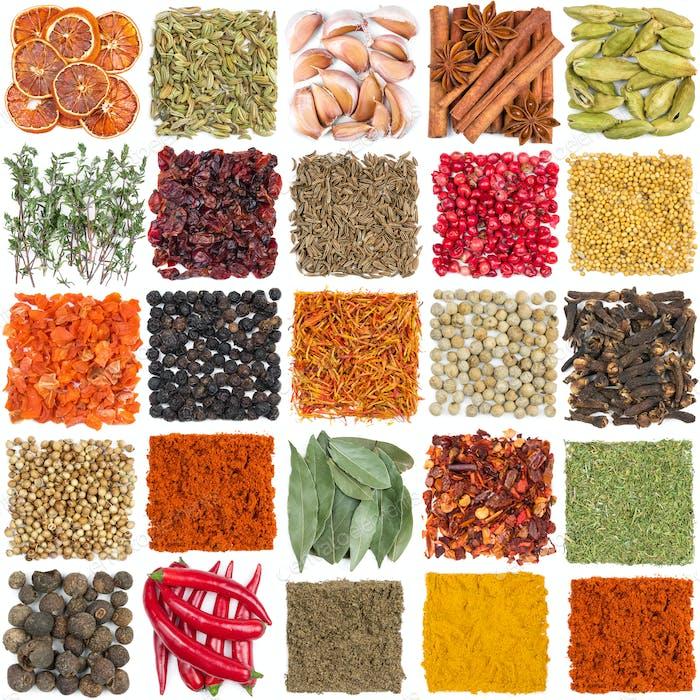 Set of different spices and seasonings