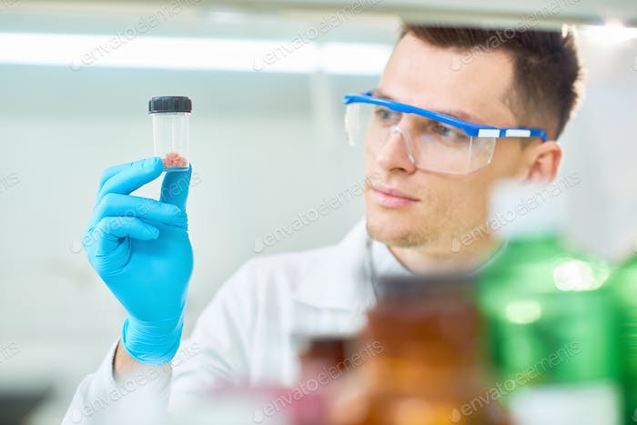 Handsome Scientist with Cultured Meat Sample
