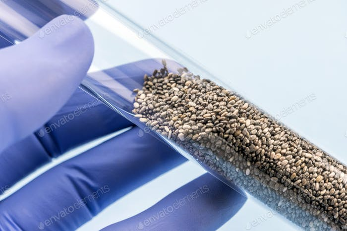 Doctor holds test tube with seeds for study in a laboratory, conceptual image