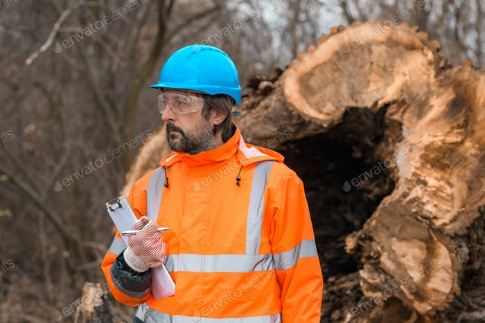 Forestry technician posing with clipboard notepad next to tree log