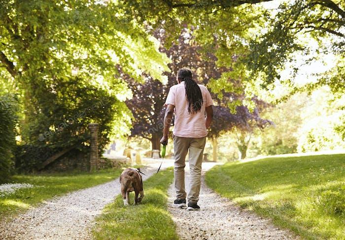 Rear View Of Senior Man Walking With Pet Bulldog In Countryside