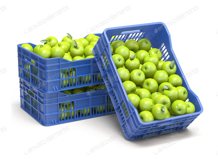 Green apples in blue plastic crates isolated on white background.