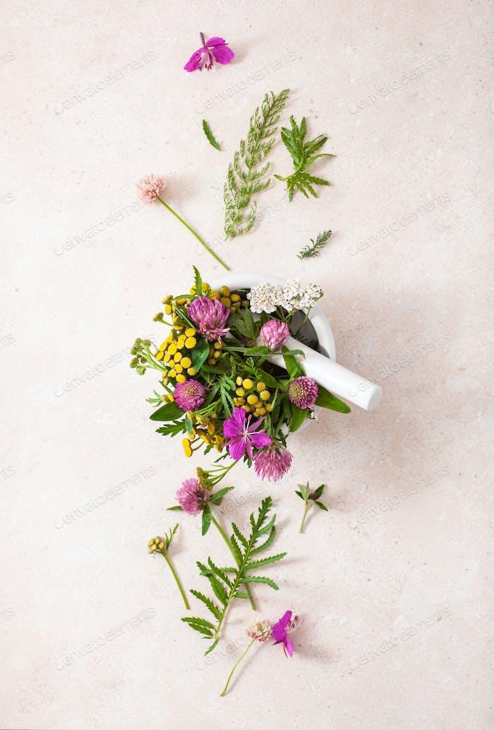 medical flowers herbs in mortar. alternative medicine. clover mi