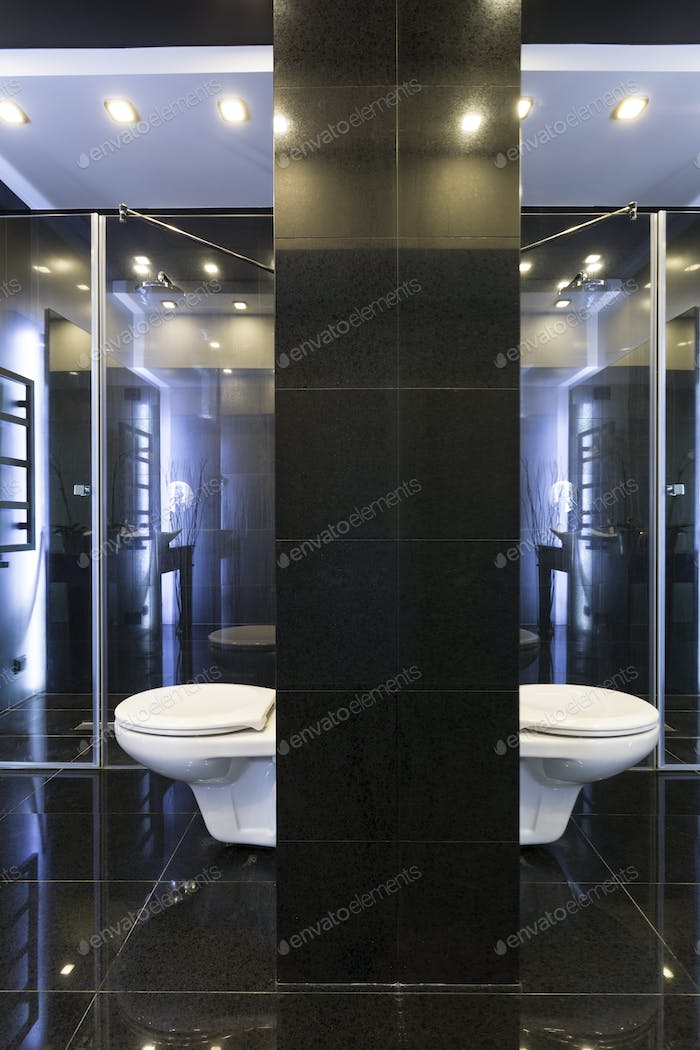 White and black bathroom