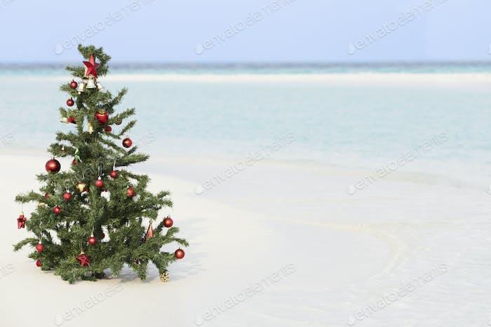 Weihnachtsbaum am schönen tropischen Strand