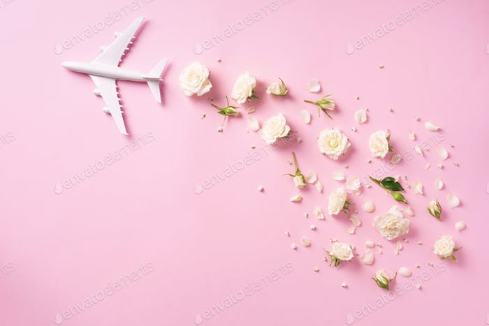 Travel concept with white plane and flowers, petals on pink background. Top view, flat lay. Copy