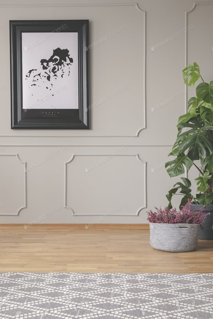 Plants and carpet in grey living room interior with poster on the wall with molding. Real photo