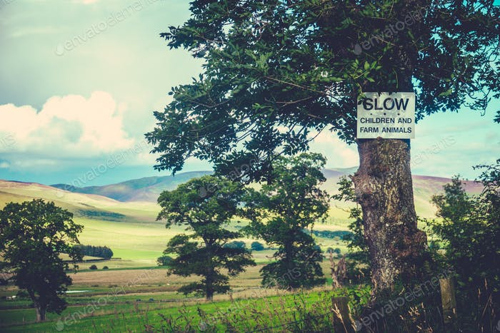 Rural Slow Sign