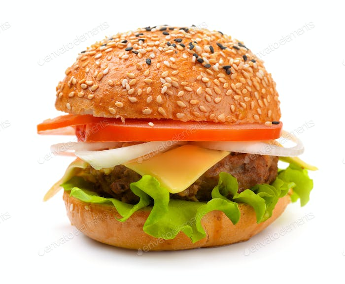 Single fresh hot cheeseburger