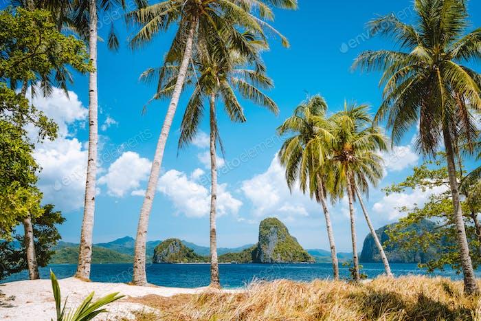 Urlaubszeit. Palawan berühmtesten touristischen Orten. Palmen und einsames Inselhüpfen