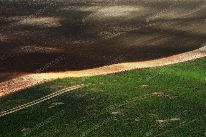 Grüne Felder mit schönen gestreiften Hügeln. Region Südmähren, Tschechische Republik