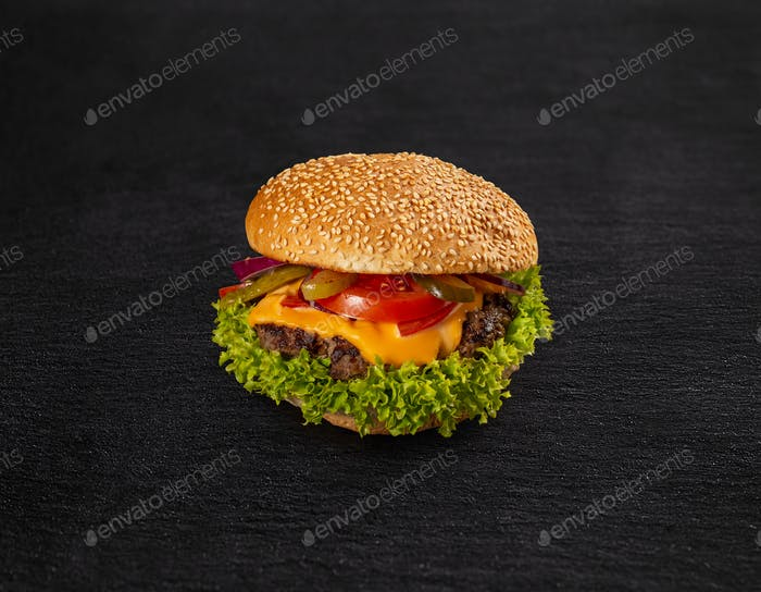 Delicious fresh hamburger