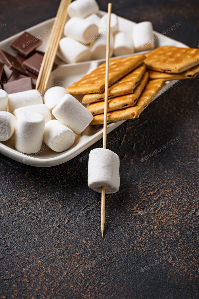Ingredients for toasting marshmallows and cooking s'mores