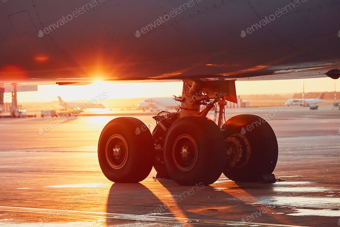Landing gear of the airplane