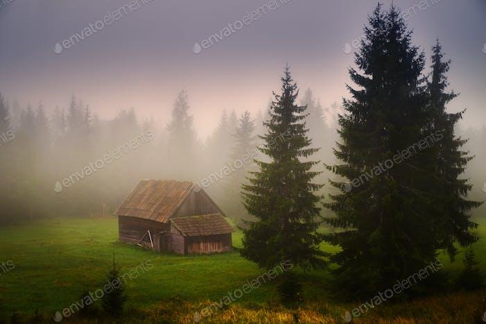 Cabin on field