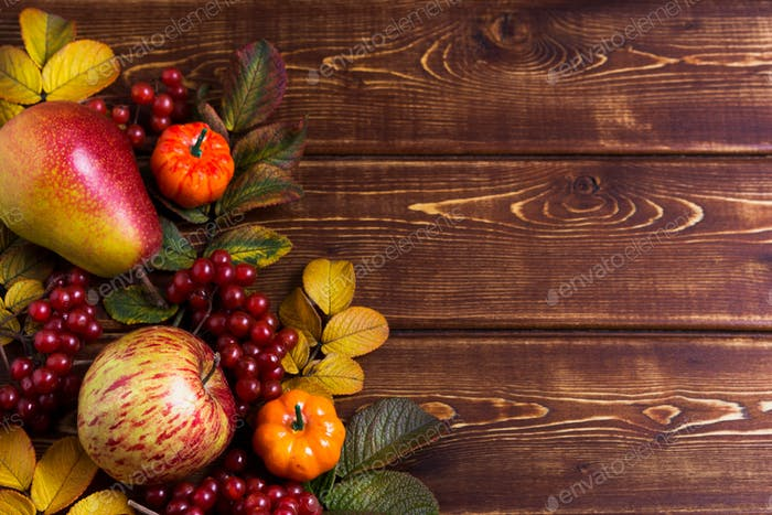 Fall decor with small pumpkins and viburnum