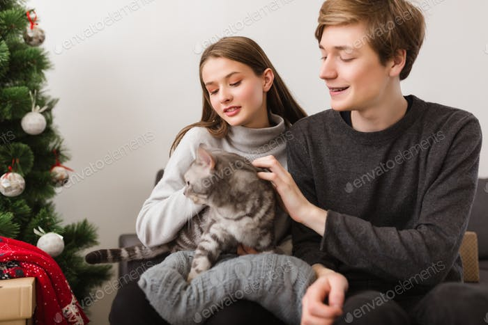 Schönes junges Paar sitzt auf dem Sofa zu Hause mit Katze in den Händen und Weihnachtsbaum in der Nähe