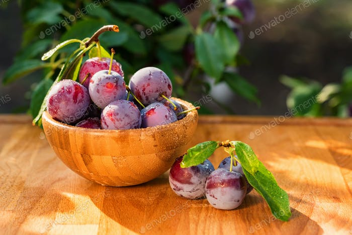 Fresh cherry plums in wooden bowl close