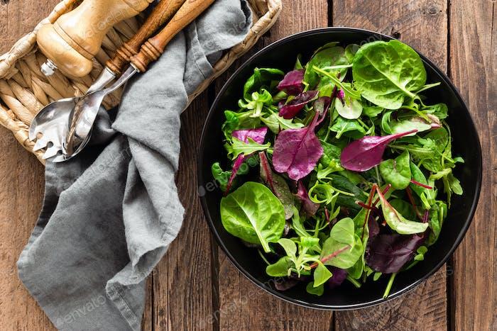 Mezcla de ensalada fresca de espinacas Bebé, hojas de rúcula, albahaca y acelga. Cocina italiana