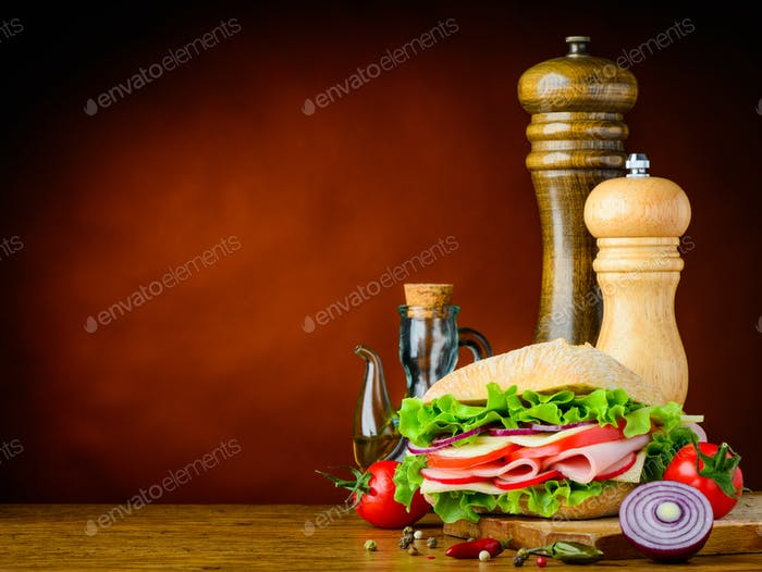 Burger with onion, tomato and spices and Copy Space