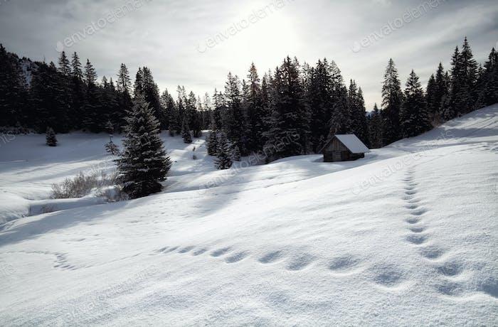 wooden cabin in snowy alpine hills