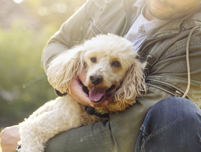 Happy dog and his owner