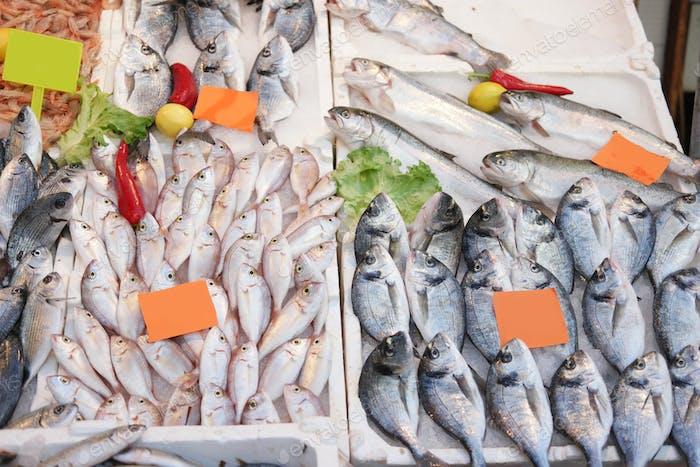 Exhibición de pescado en el mercado de pescado.