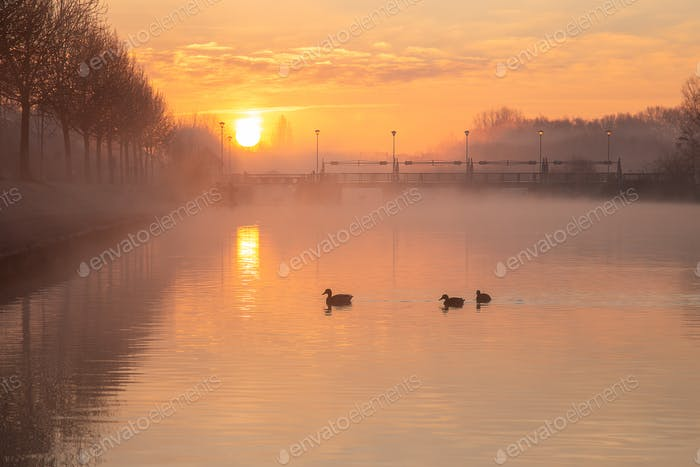 Atmospheric Sunrise over the old sluice quay in Menen, Belgie