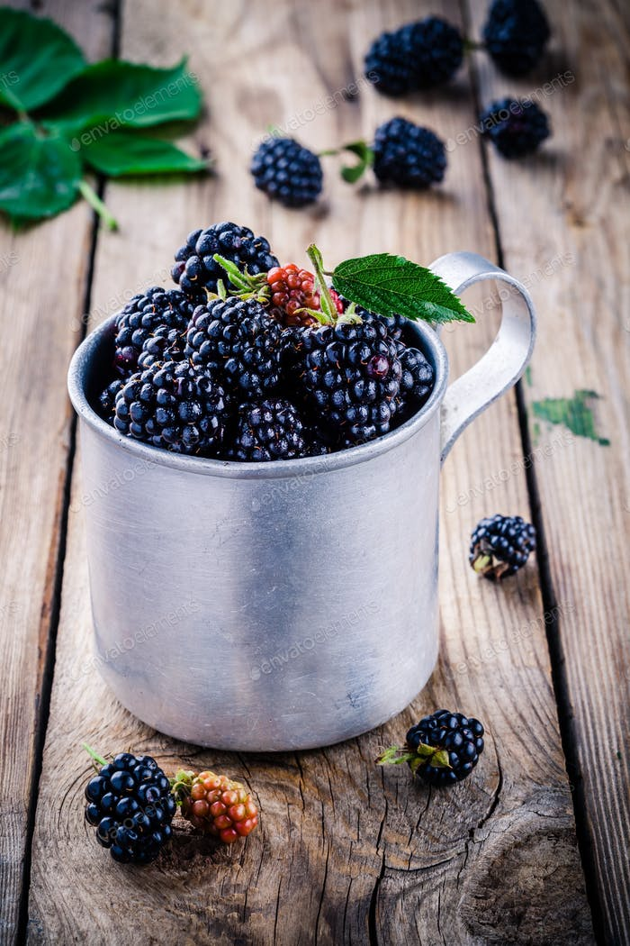 juicy fresh organic blackberries in old mug