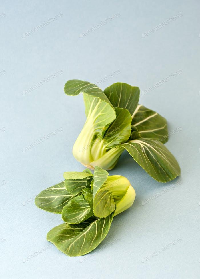 Two bundles of Cabbage Pak-choi (salad) on a light blue backgrou