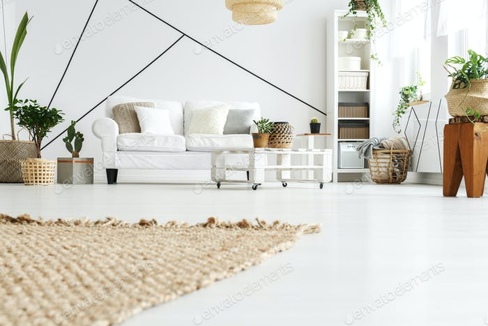 Carpet in the living room