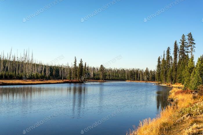 Snake River Landscape