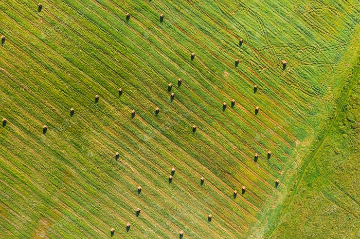 Aerial View of Summer Field Landscape With With Dry Hay Bales During Harvest.