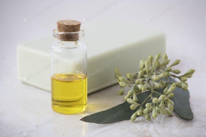 Öl, Seife und Eukalyptusblätter