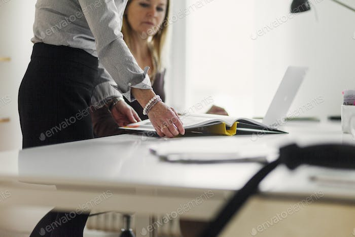 Businesswomen with file on desk in office