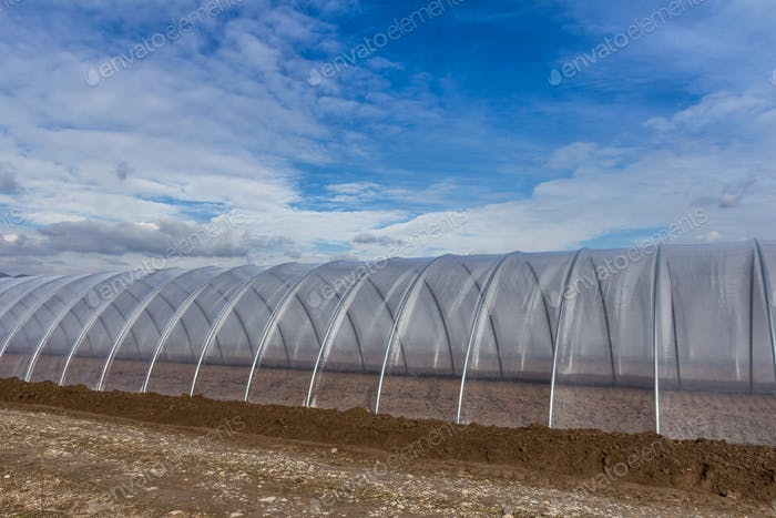 Greenhouse exterior on blue sky