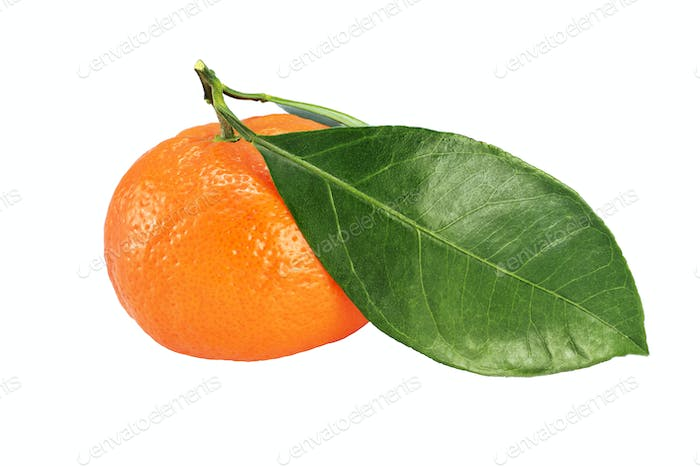 Whole ripe mandarin with leaves isolated on white