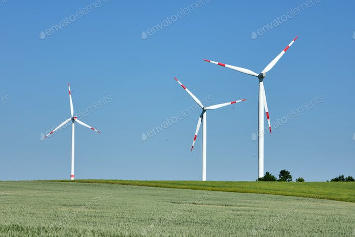Wind turbines in a grainfield with flying birds