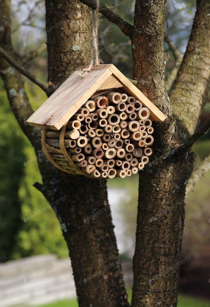 Insektenhotel hängen im Gartenbaum