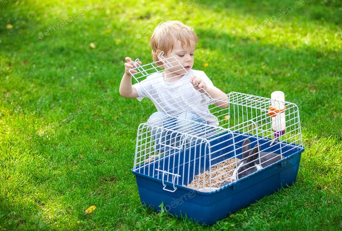 Cute boy opening a cage with a pet rabbit in a park