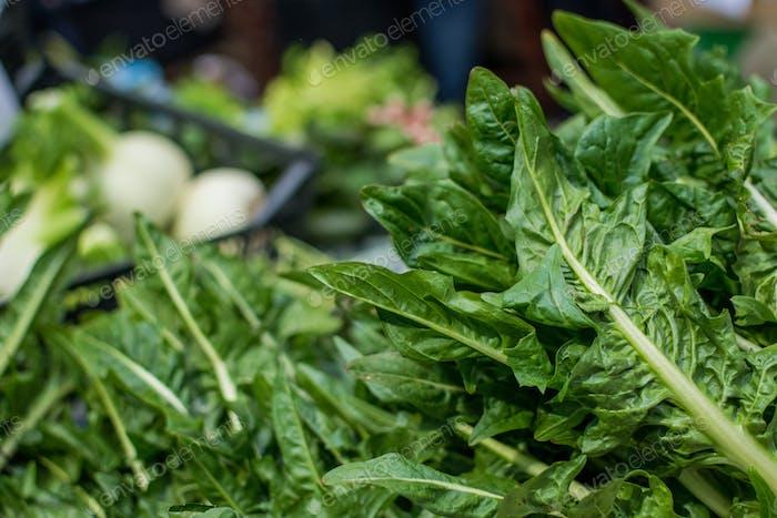 Knuspriger Spinat zum Verkauf