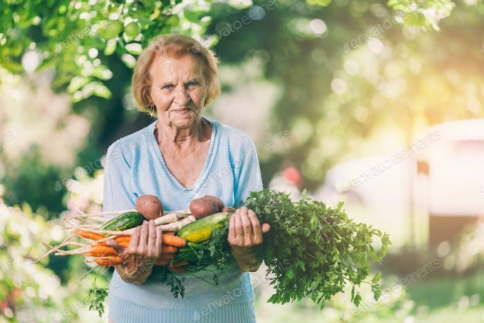 Senior Frau mit frischer Ernte aus ihrem Garten