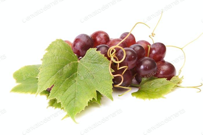 Juicy grape on a white.