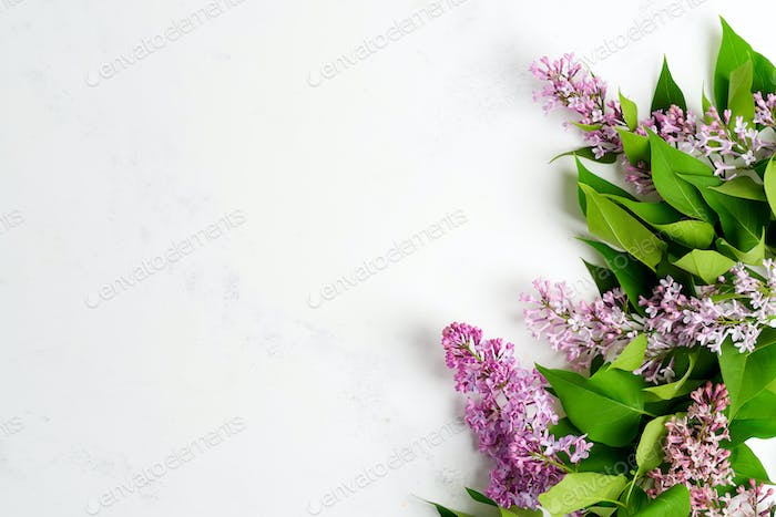 Greeting frame from fresh lilac flowers with green leaves on a light grey marble background. Top