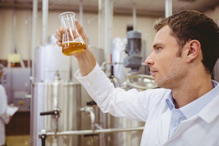 Focused scientist looking beaker with beer in the factory
