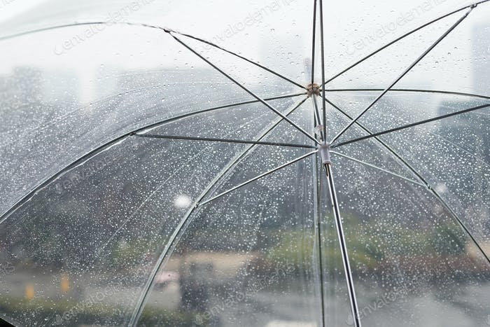 Wet transparent umbrella on natural