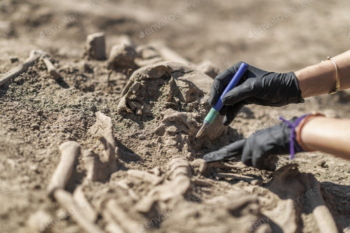 Archaeology – Exhumation of an Ancient Human Skeleton with Digging Tool Kit