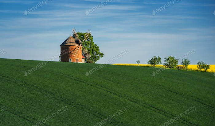 Old wind mill at south moravia