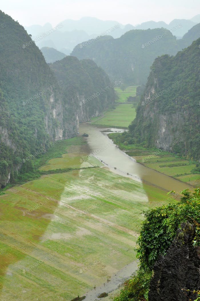 Rice fields and limestone rocks from Hang Mua Temple viewpoint. Tam Coc, Ninh Binh, Vietnam