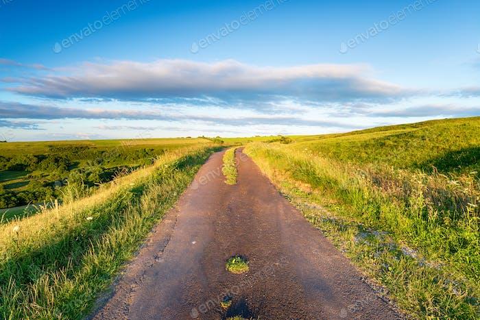 A country lane running across Eggardon Hill
